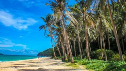 Südseeatmosphäre pur! Der Puka Beach auf Boracay