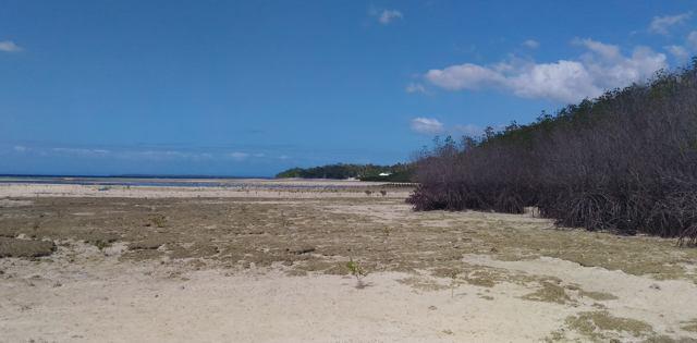 Liegt seit dem Erdbeben trocken: Küstenabschnitt bei Loon