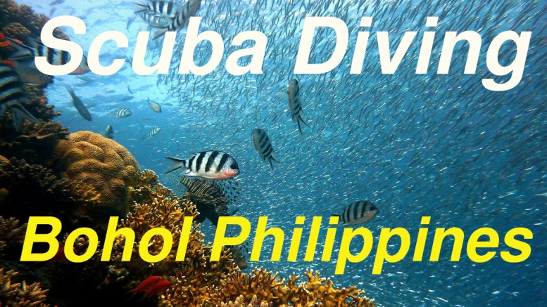 Bohol Diving Video